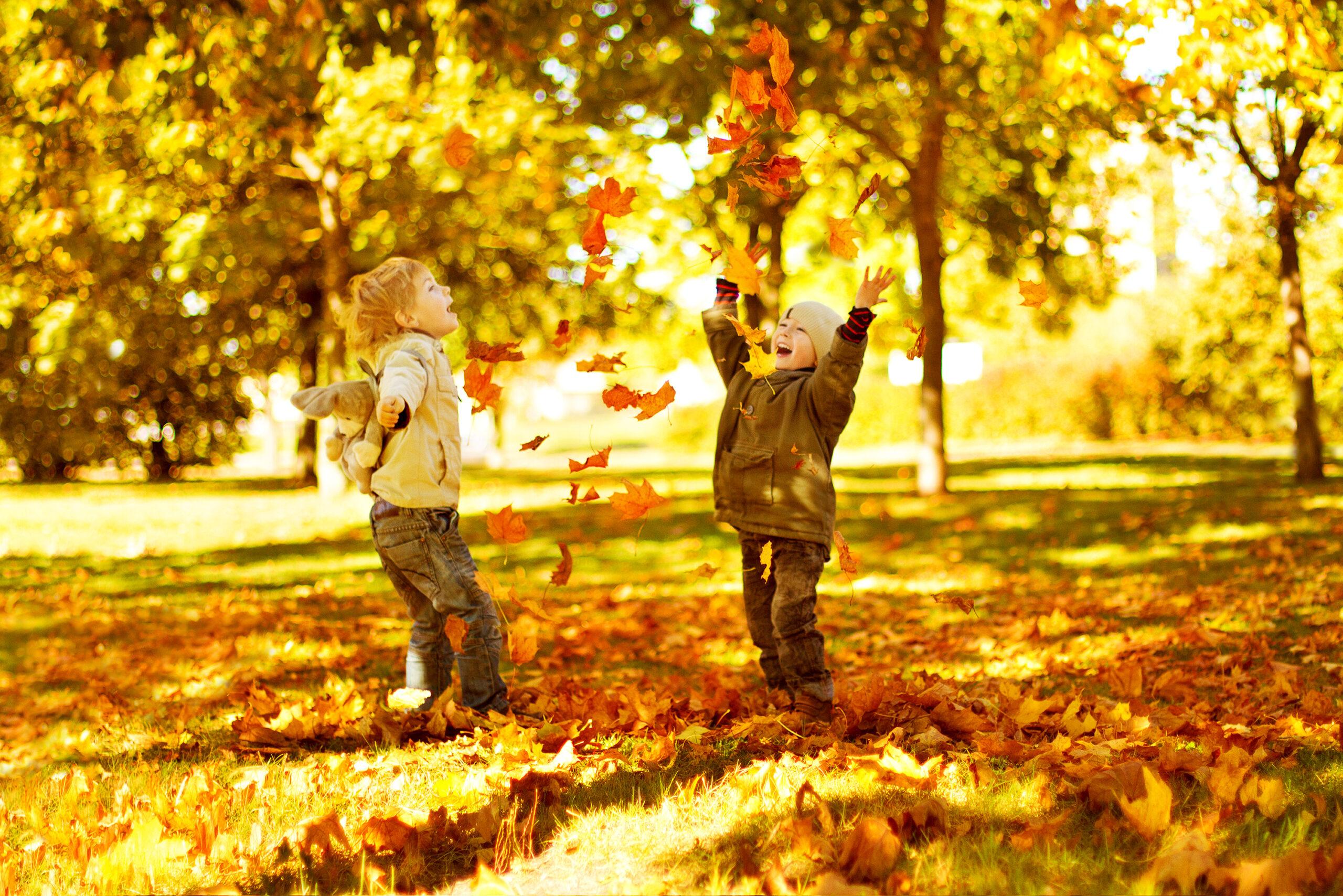 Enfants qui jouent dans les feuilles / Automne