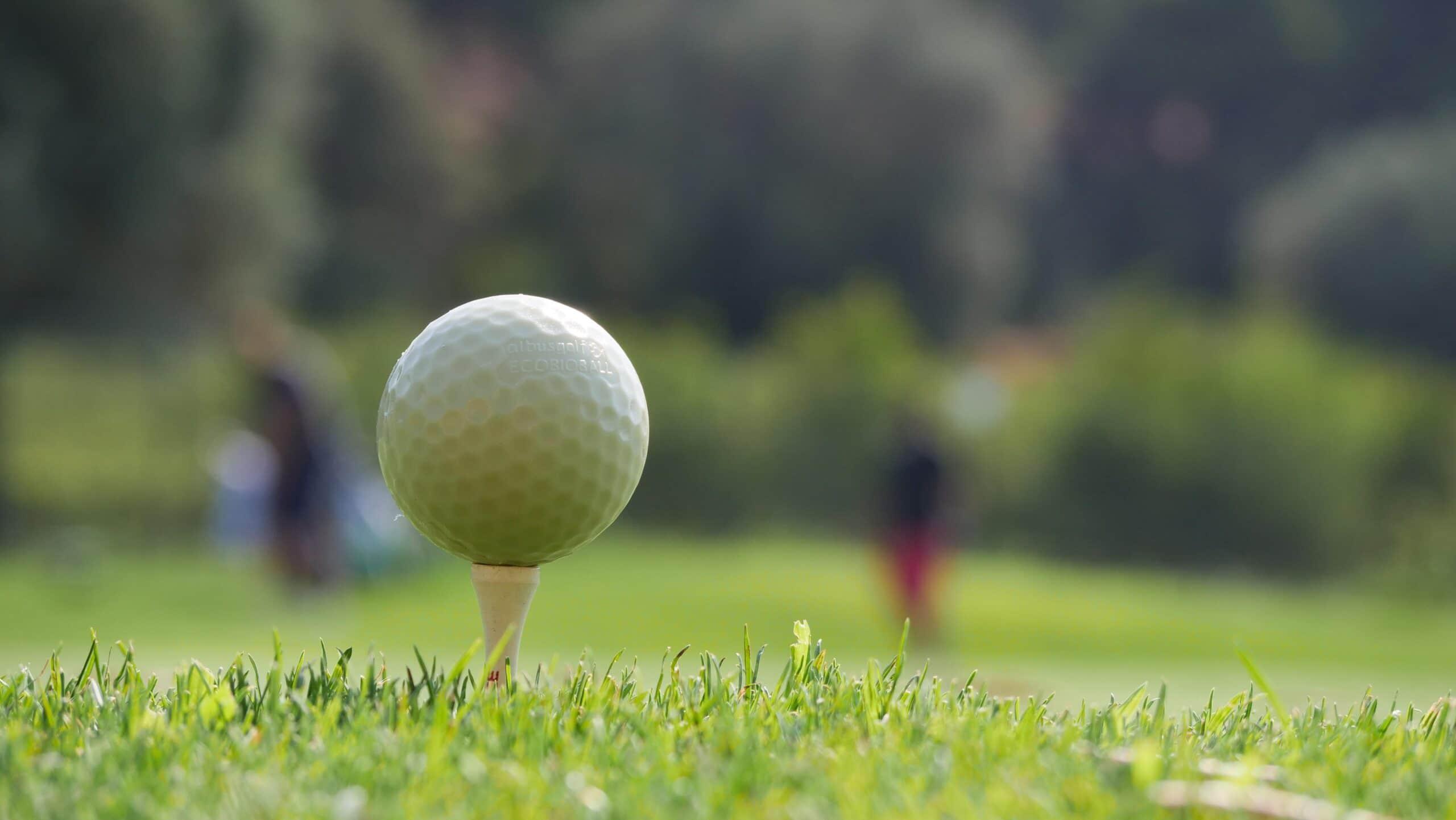 Photo du Golf Frégate Provence